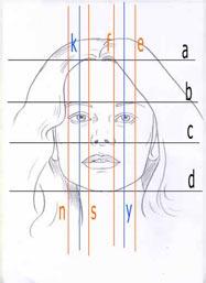 соотношение пропорций в лице человека